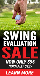 $95 Swing Evaluation