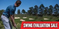 $95 Swing Evaluation